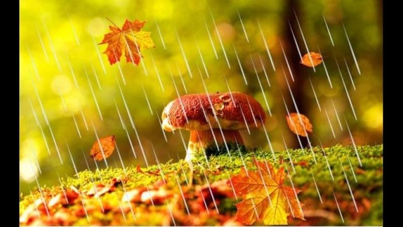Вальс дождя. Фридерик Шопен.