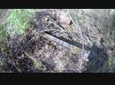[Погоня за Сокровищами] Металлолом в лесу. Что искал то и нашел!