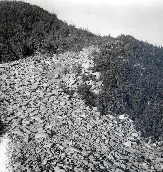 СВАЛКА, КОТОРОЙ 2000 ТЫСЯЧИ ЛЕТ На окраине Рима, вблизи восточного берега реки Тибр, расположен массивный курган, покрытый кустарником и мелкими деревьями. На первый взгляд, может показаться,