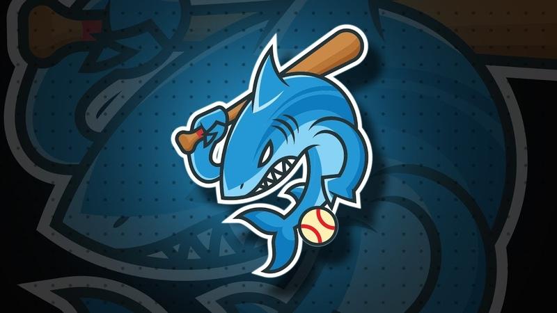 New Shark Mascot Logo Design Illustrator Tutorial