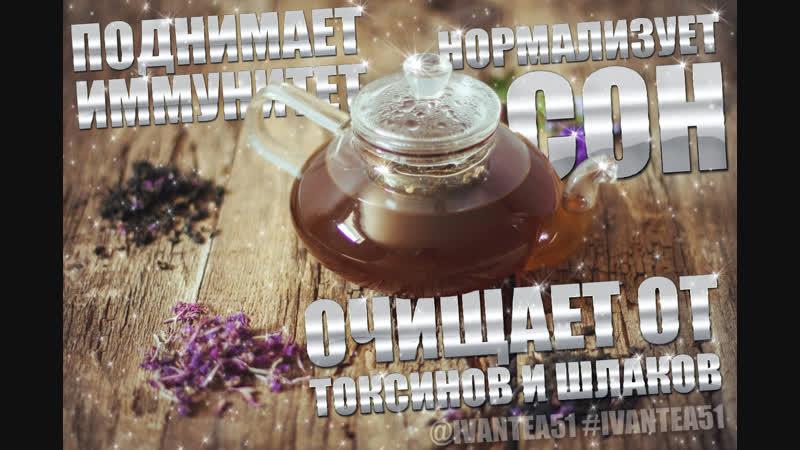 Иван-чай поднимает иммунитет, нормализует сон, помогает при нервных расстройствах, улучшает обменные процессы.