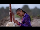 Sona Jobarteh Gambia Pure music with Kora african musical instrument