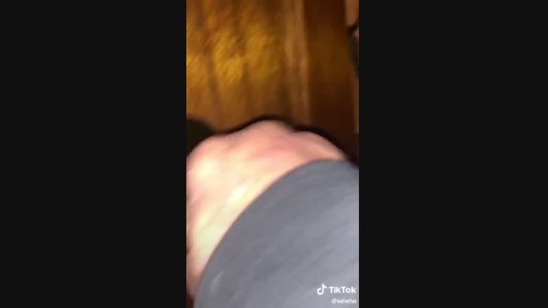 Горячая Собака
