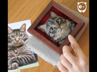 Милые котики ручной работы