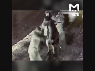 Убийство возле караоке-бара в москве попало на видео