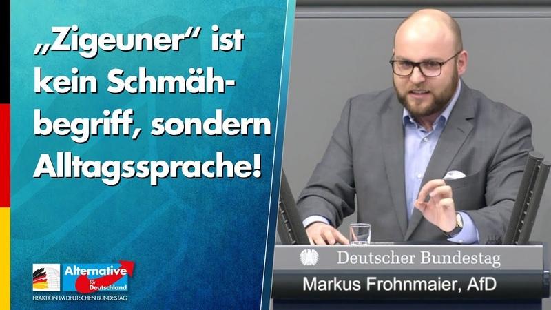 """""""Zigeuner ist kein Schmähbegriff sondern Alltagssprache Markus Frohnmaier AfD Fraktion"""