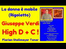 LA DONNE E MOBILE Excerpt with High D and C by Florian Stollmayer Tenor (Toronto May 13, 2019)