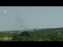 Сирия: боевики подожгли виноградник в провинции Алеппо