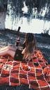 Виолетта Малахова фото #15