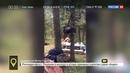 Новости на Россия 24 Медведь культурно объел отдыхающих в лесу