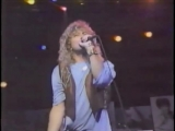 ROBERT PLANT - HEAVEN KNOWS - MADISON SQ. GARDEN