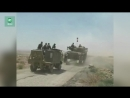 Сирия на границе с Иорданией ФАН публикует видео передвижения колонны САА в Даръа