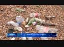 Plogging Atyrau Жасыл ел сарбаздары арасында Плоггинг Жасыл ел Атырау