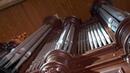 Orgue de la collégiale Saint Michel de Castelnaudary