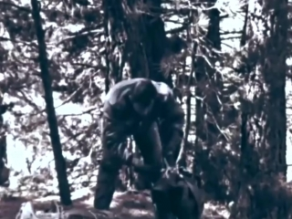 Mountain and Desert Survival 1963 US Air Force Training Film; Downed Pilot in Wi