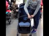 Прогулочная коляска 4baby Rio-Flexy