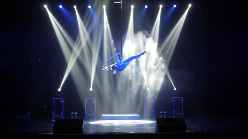 FlyArt Festival 2018 Васильева Ульяна Владимировна 3 место Aerial hoop kids 14-17 лет
