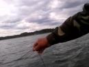 Video-2014-07-09-14-49-04