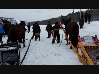 Упряжка лошадей на скорость в Бурзянском районе РБ