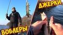 Сами в ШОКЕ Воблеры против Джерков кто кого Рыболовный батл ловля щуки на воблеры и джерки