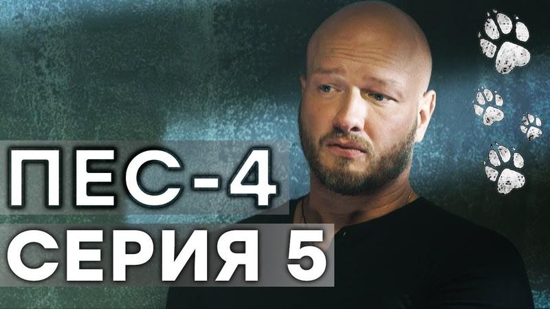 Сериал ПЕС - 4 сезон - 5 серия - ВСЕ СЕРИИ смотреть онлайн | СЕРИАЛЫ ICTV
