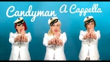 Candyman Christina Aguilera - a cappella cover By Alex Garsya