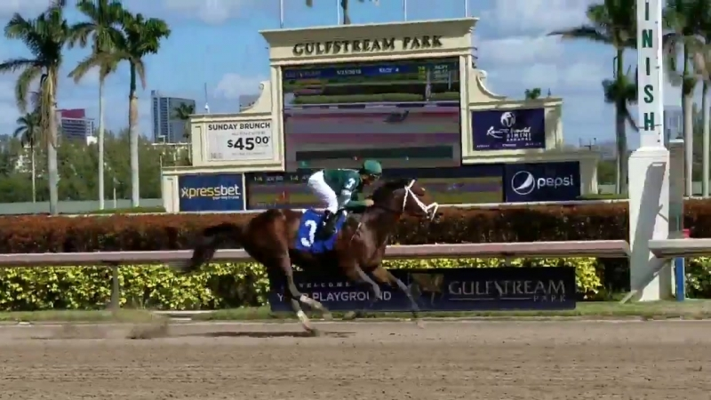 Army Mule scores in the 4th race at GulfstreamPark.