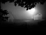 Scott Walker - Farmer In The City (High Quality Audio)