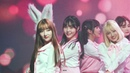 4k 181210 그린리본환경콘서트 핑크판타지(PinkFantasy) 하린(HARIN) 직캠 - 이리와(iriwa)