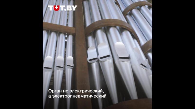 В Могилеве впервые за последние 60 лет зазвучал орган