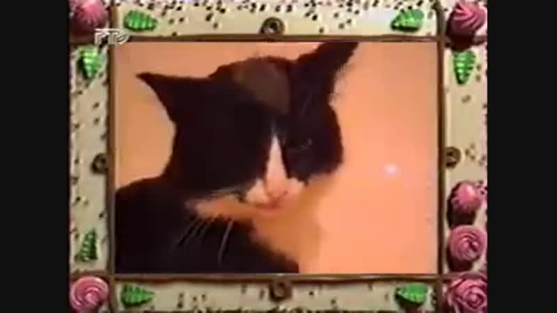 Сам себе режиссёр (РТР, 1998)