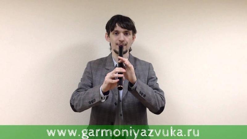 Первый ВИДЕО УРОК по игре на флейте Кена в Соль