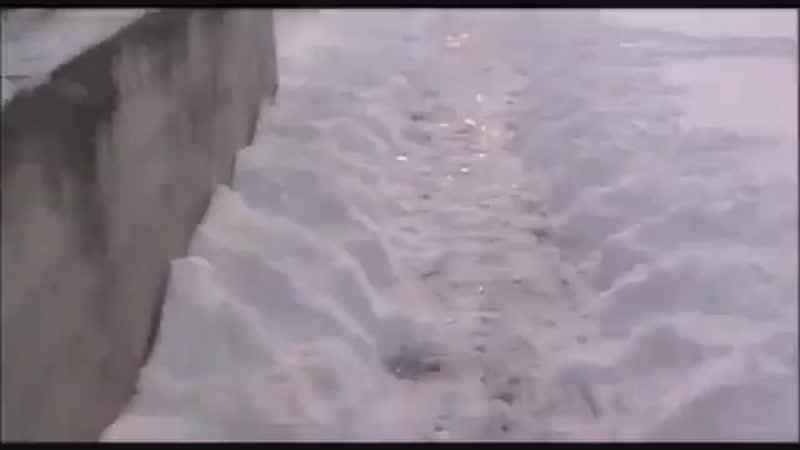 Зимний прикол ✌актуально