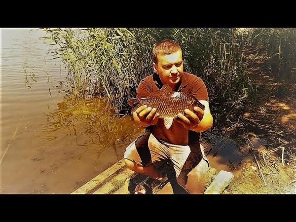 Рыбалка с ночёвкой на реке КАРАСИ ЛАПТИ АТАКУЮТ на КОРМАКИ