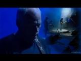 David_Gilmour___Richard_Wright__On_an_Island_.mp4