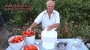 Переработка томатов на соковыжималке Салют