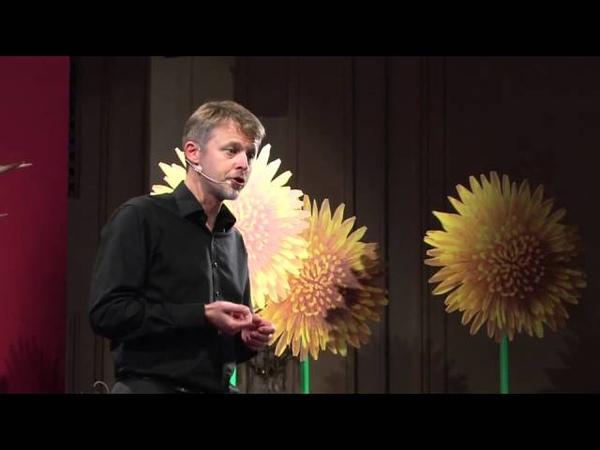 Effectuation. Elemente der unternehmerischen Methode Michael Faschingbauer at TEDxSalzburg