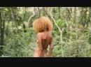 Красивая девушка на природе.mp4