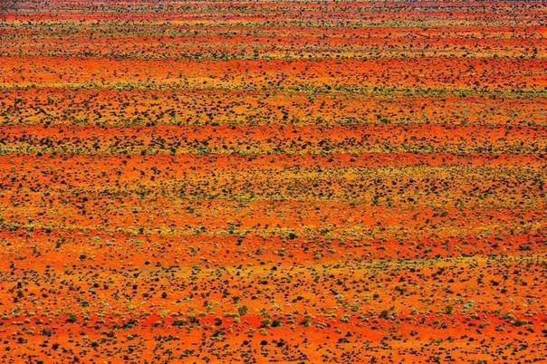 Фотограф снимает потрясающие ландшафты пустынь в Австралии Четыре года назад фотограф Джошуа Смит занялся новым интересным проектом. Воодушевленный любовью к Австралии и вдохновленный полетом
