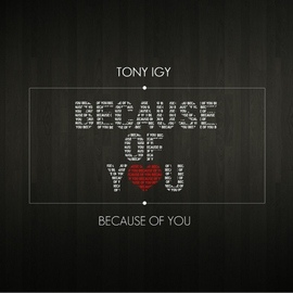 TONY IGY альбом Because of You