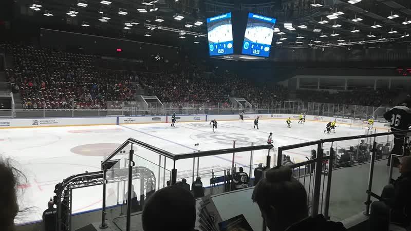 Хоккей ВХЛ Динамо СПб Сырыарка