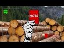 В Украине назревает катастрофа с вырубкой лесов, – Красная карточка №760 [20.09.2018]