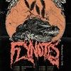 FLYNOTES