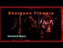 Приглашение на концерт группы Shotgunn Flowers в рамках фестиваля IONOSFEAR FEST 25 августа