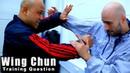 Wing Chun training - wing chun defending tan da Q79