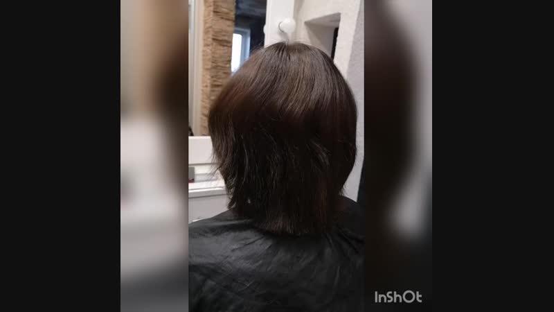 волос ДО процедуры