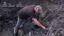 Проклятие острова Оук / The Curse of Oak Island S06E10 - Fingers Made Of Stone.