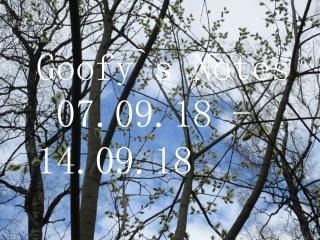 Goofy`s Notes (07.09.18 - 14.09.18)