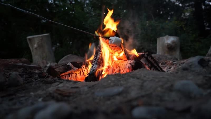 Походного костер / Campfire