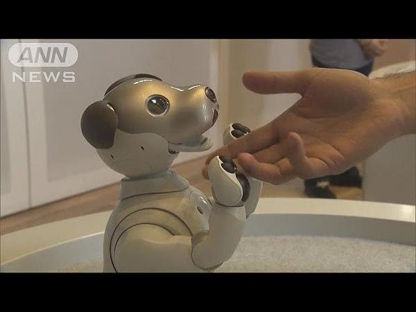 ソニー犬型ロボット「aibo」 新型がニューヨークに(180825)